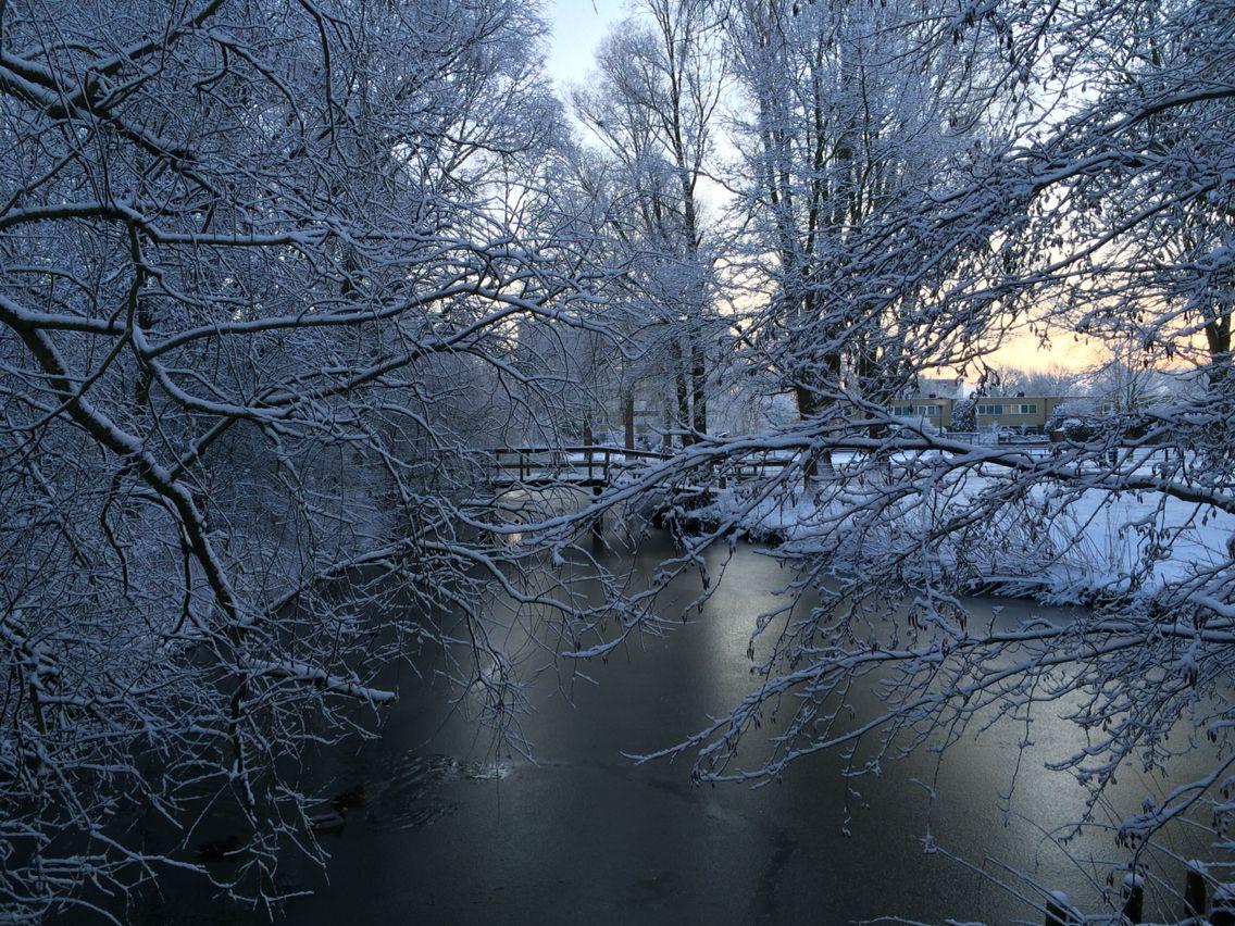 Sneeuw in Bilgaard