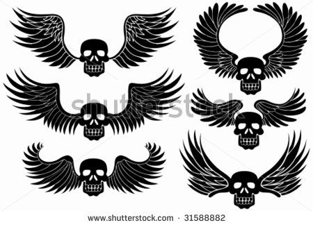 Skull with Wings Tattoo Lower Stomaches photo, Skull with ...  |Skull Tummy Tattoo Wings