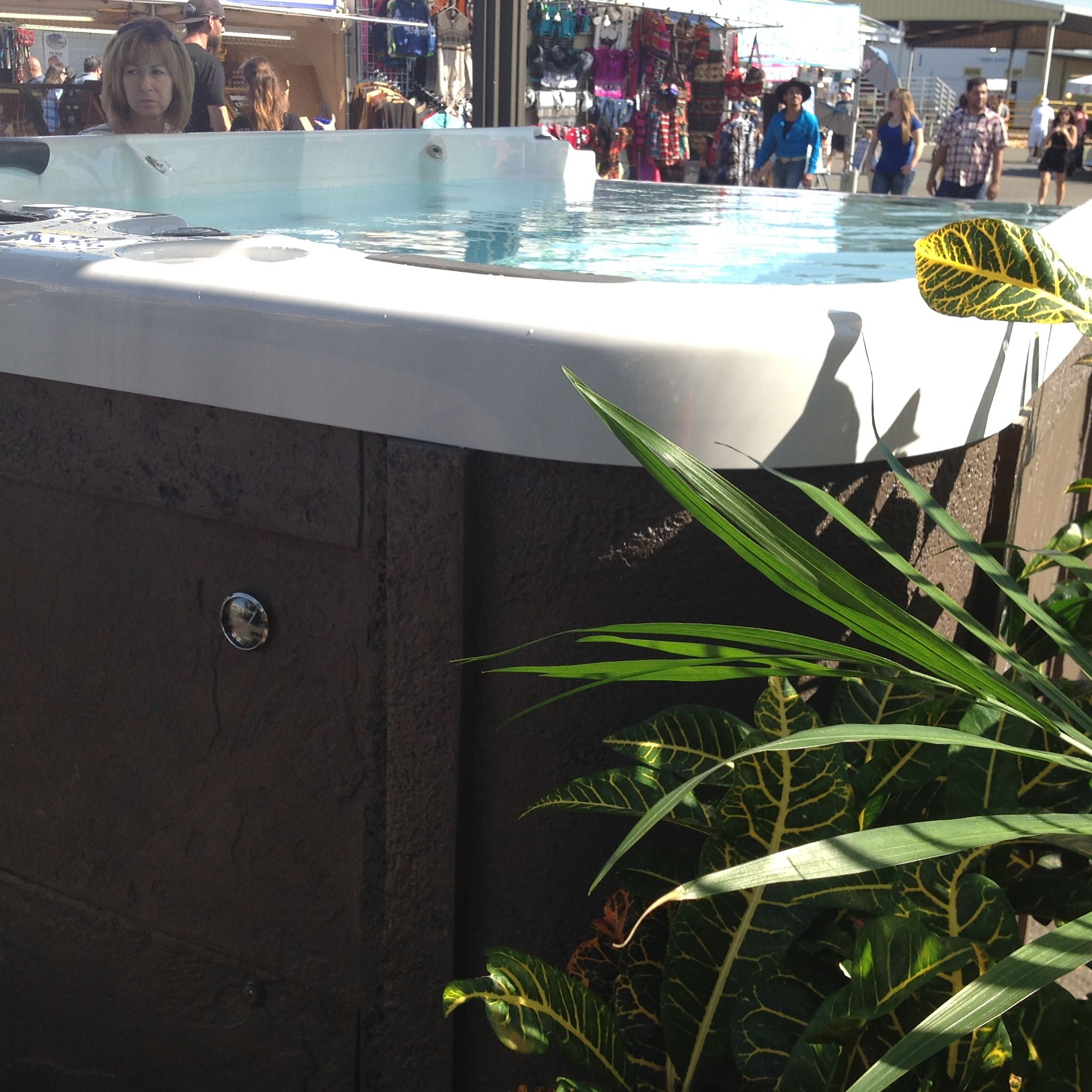 Rich S Is At The Washington State Fair In Puyallup We Re Offering Special Fair Pricing At Our Tent Along With A Great Display Coast Spas Swim Spa Hot Tub