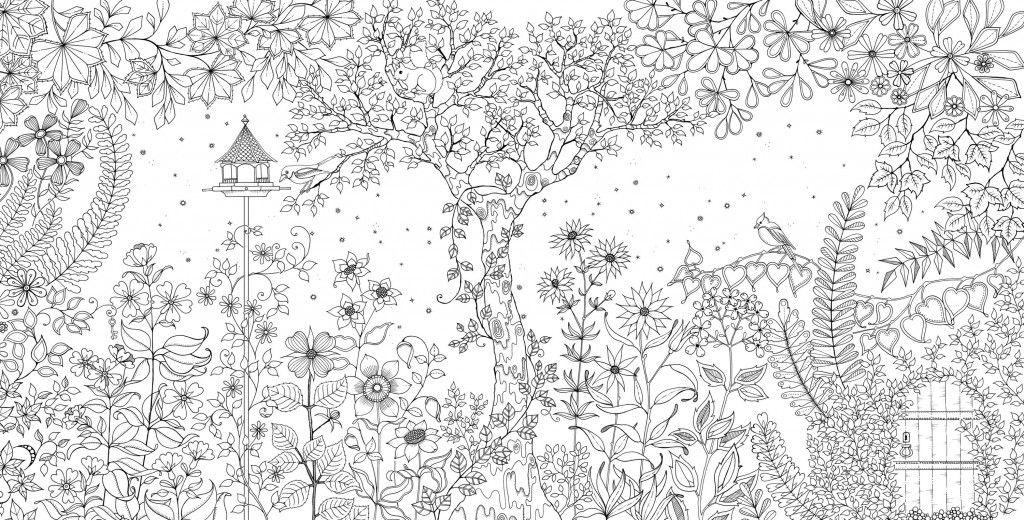 Livro Jardim Secreto Jardim Secreto Colorir Adult Coloring
