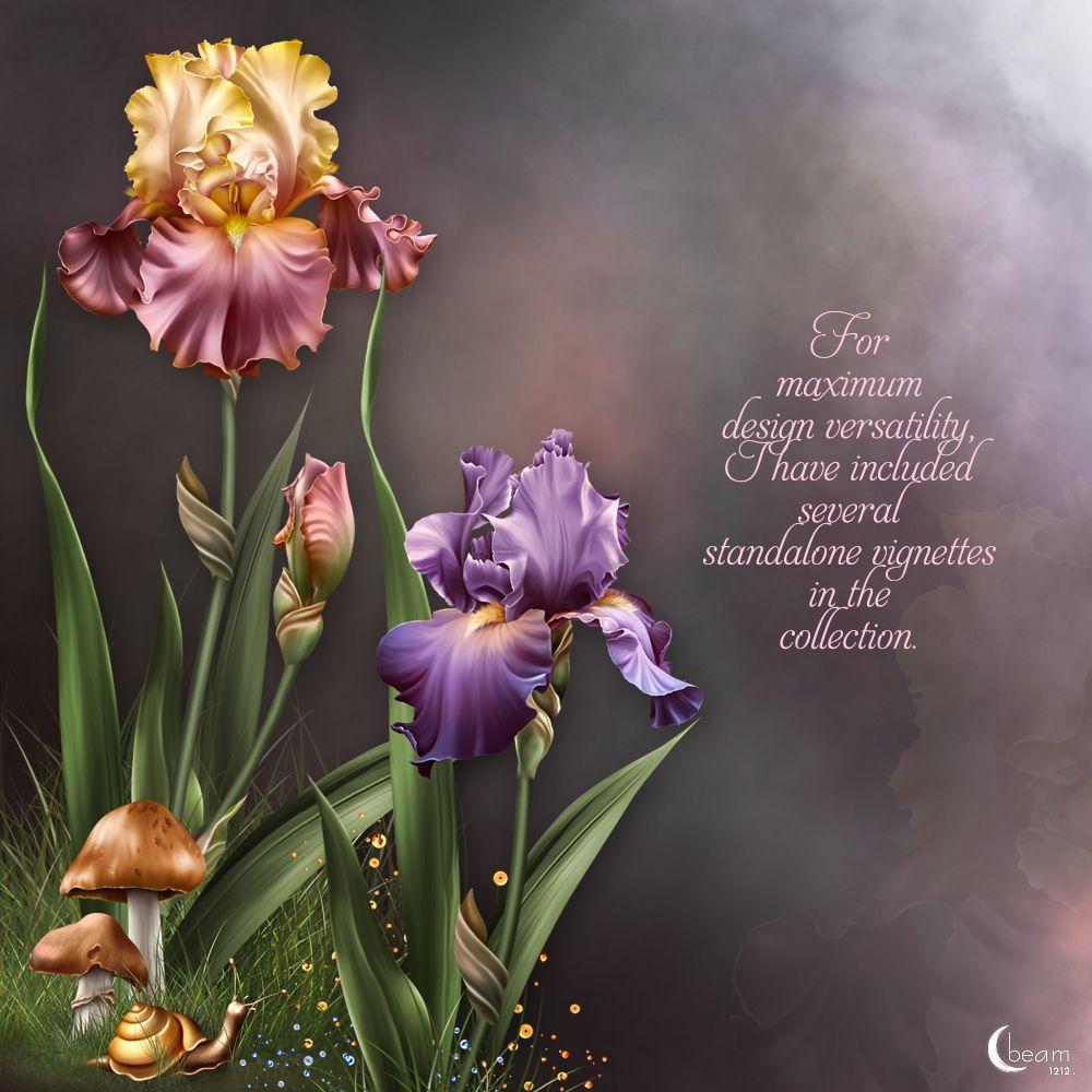 Joyful Irises For The Spring Moonbeam S Iris Dreams Flower Art Iris Painting Iris Flowers