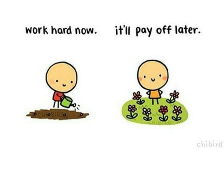 Work hard now. It'll pay off later   Quotes   Motivational ...