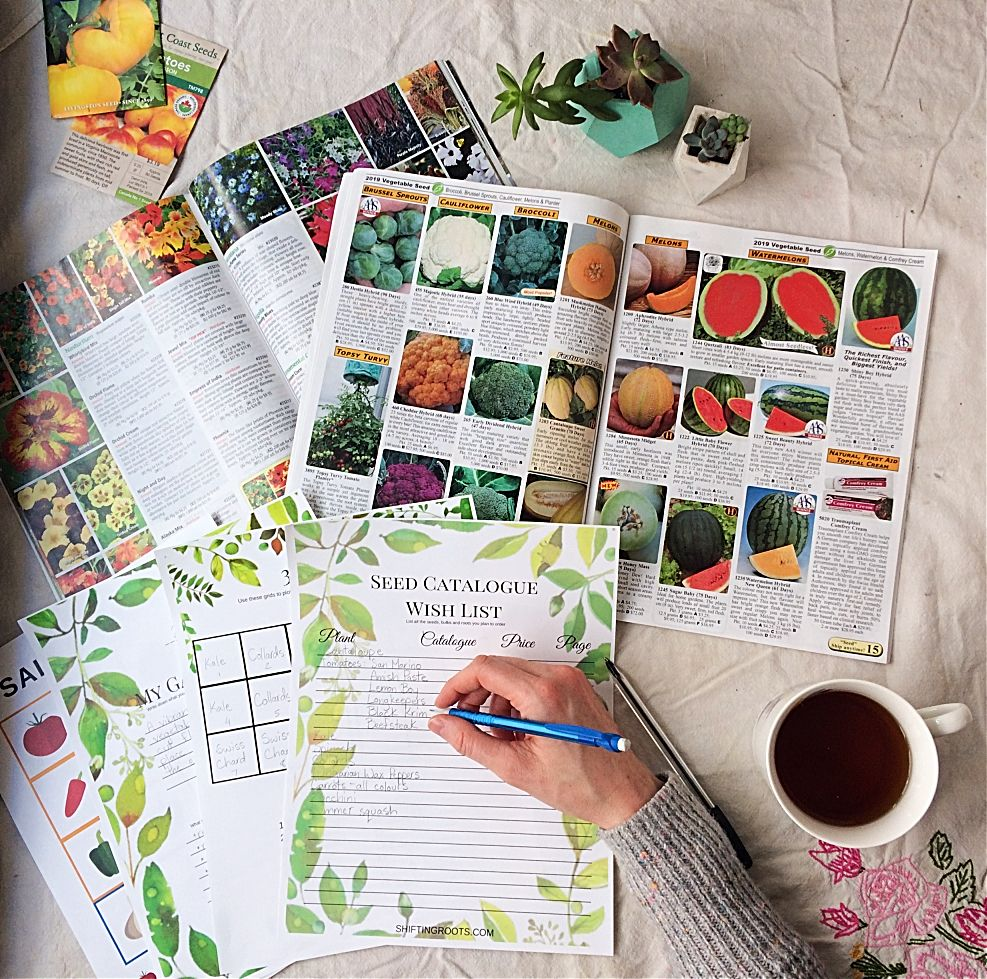 Take the stress out of garden planning with these 10 ...
