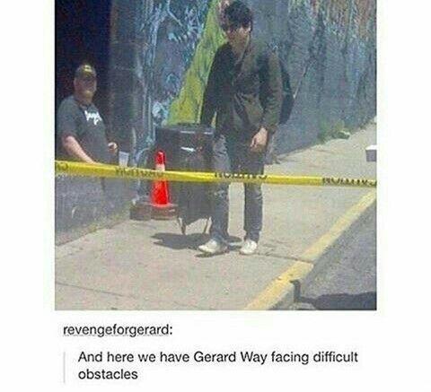 Gerard Way<<< same<<< oml he looks genuinely confused like 'where tf do i go now'