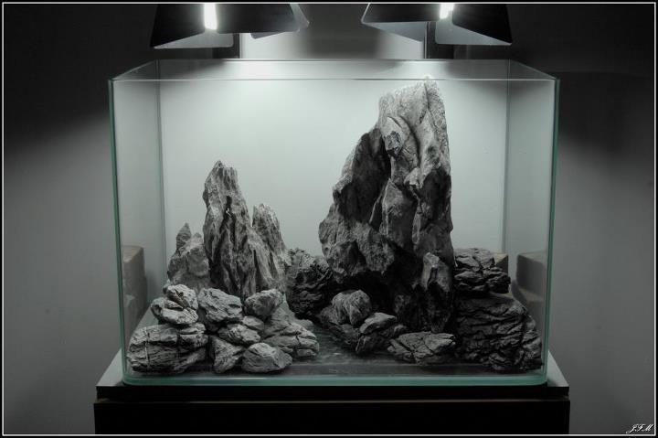 Stone Cold Aquascape Good For Cichlids Aquascape Aquarium