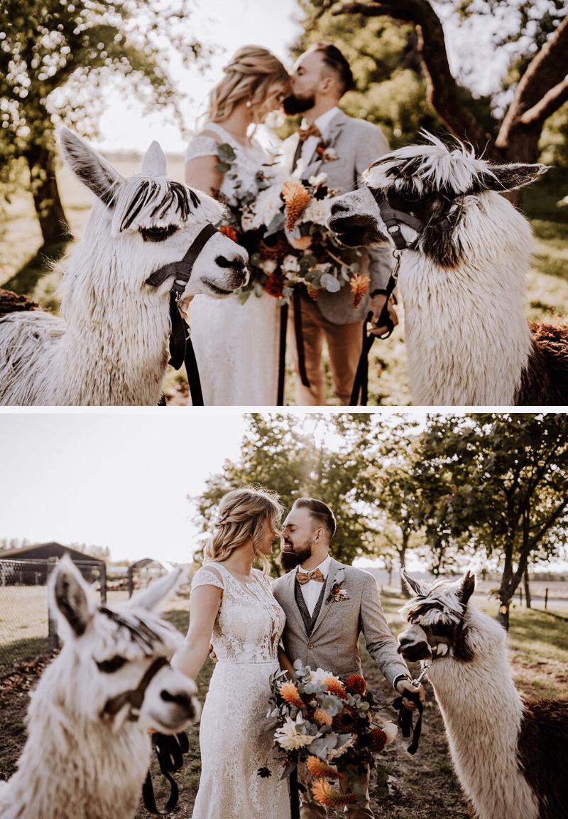 11 Geniale Ideen Zur Unterhaltung Der Hochzeitsgaste Hochzeitskiste In 2021 Hochzeitsfotografie Ideen Hochzeitsfoto Idee Fotos Hochzeit