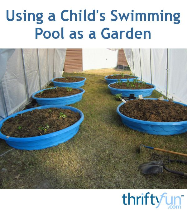 Using a Child's Swimming Pool as a Garden