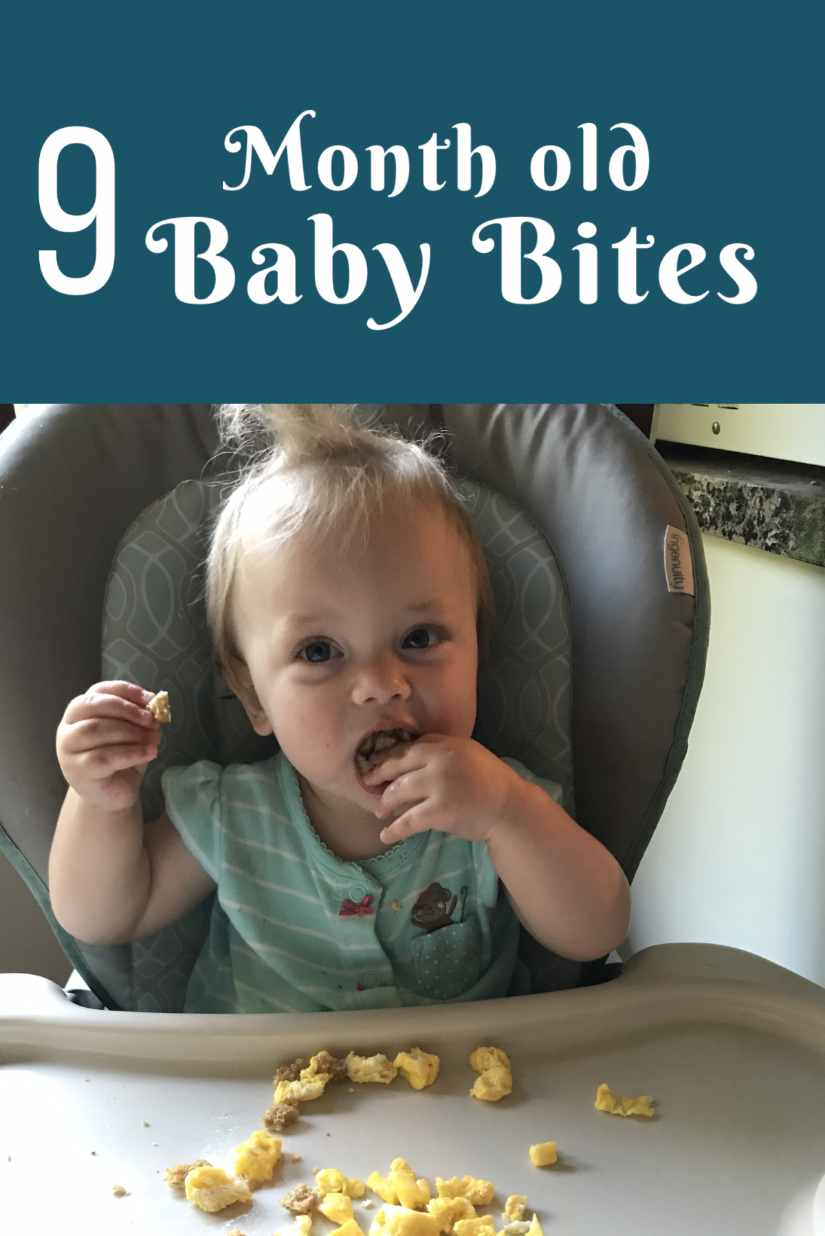 Nine Month old baby food. Breads, proteins, fruits, and ...