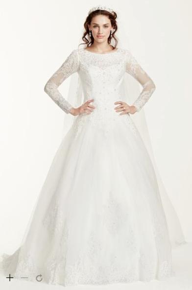 Long Sleeve Drop-Waist Tulle Ball Gown
