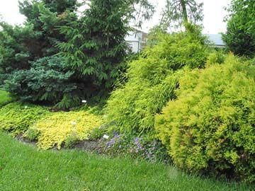 8068018f937c86e87755e5b2320ab3bb - Better Homes And Gardens Test Garden Des Moines Iowa