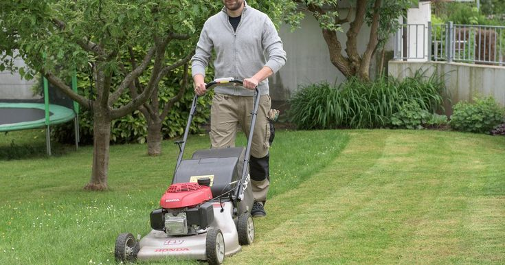 To renew your lawn without digging To renew your lawn without digging