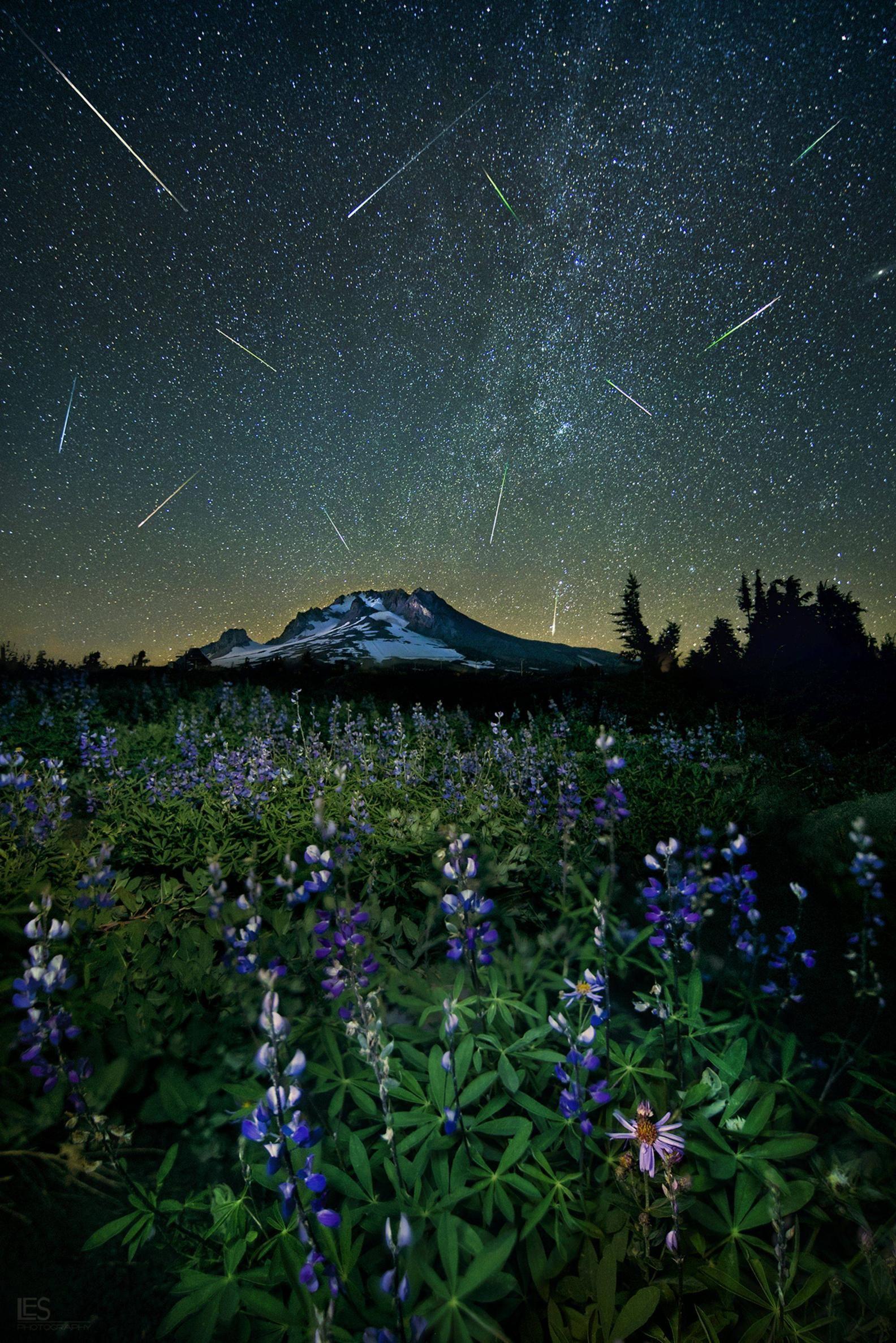 The Perseid Meteor Shower Over Mt Hood