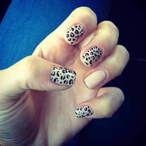 Leopard manicure nails leopard diy nail art manicure diy ideas do it leopard manicure nails leopard diy nail art manicure diy ideas do it yourself diy nails nail solutioingenieria Choice Image