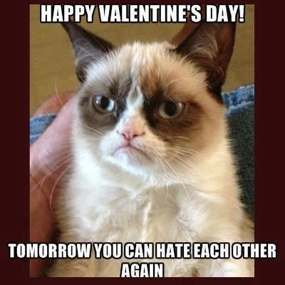 Resume the hate Grumpy cat ( I love this cat) Pinterest Grumpy cat
