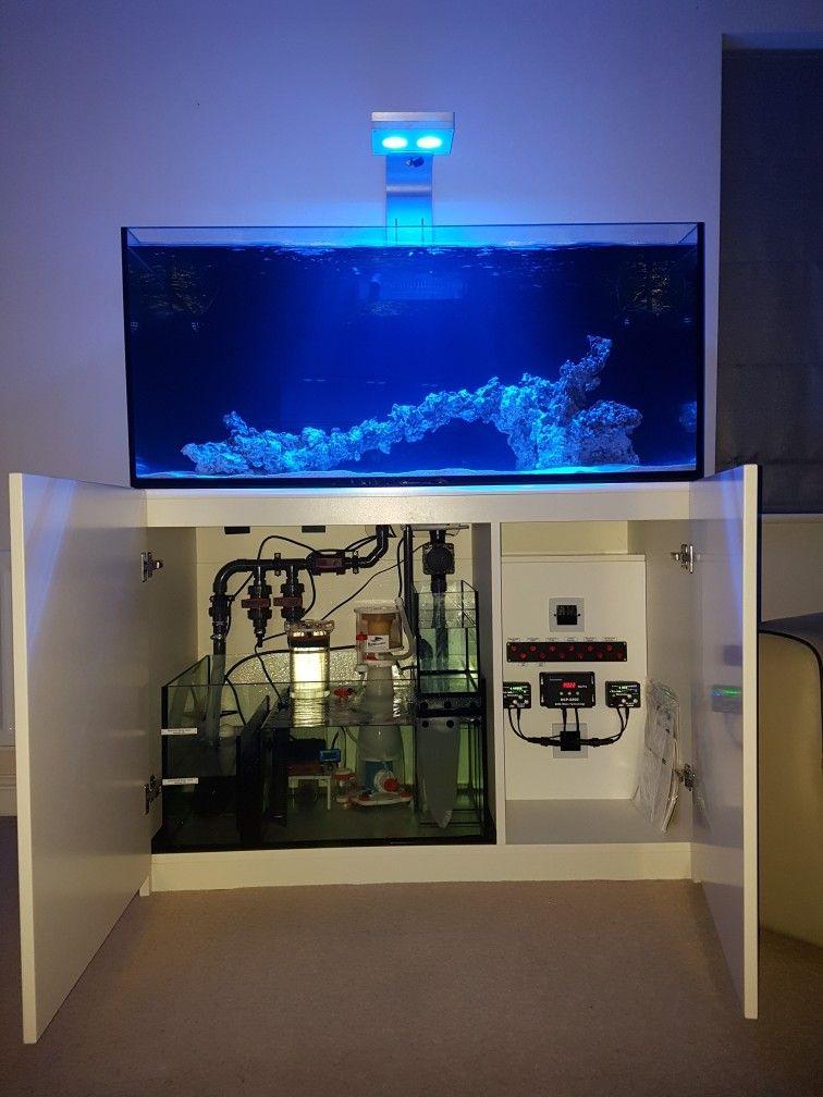 Reefer 350 Initial Setup Aquarium Sump Reef Aquarium