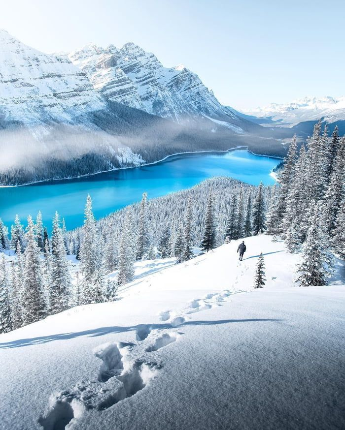 Peyto Lake, Kanada #lustig #infinityfunny #supersuperfunny