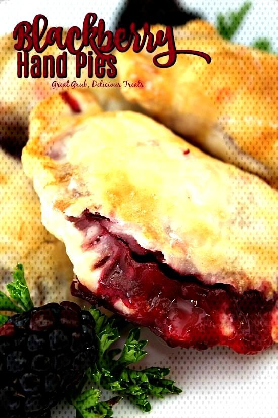 Blackberry Hand Pies are the perfect snack made with delicious blackberries stuffed inside pie crus