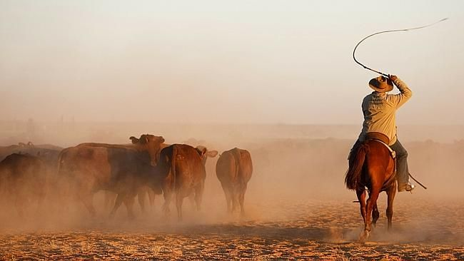 Anna Creek Station in South Australia, which is the world's largest cattle station, is pa