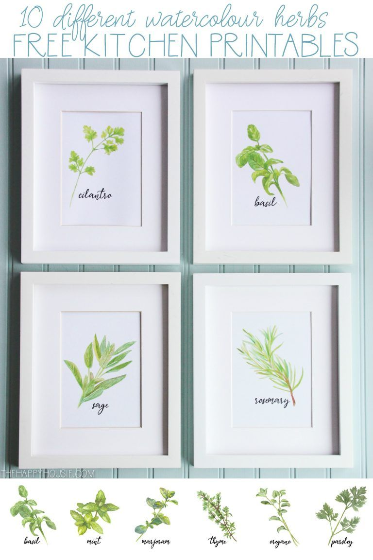 Watercolour Herb Free Kitchen Printables In 10 Designs