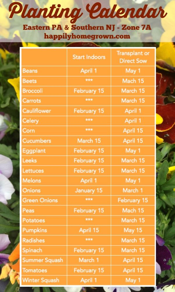 Do you live in eastern PA or southern NJ and want to know when to start your seeds? A planting calendar specific to our area is key!