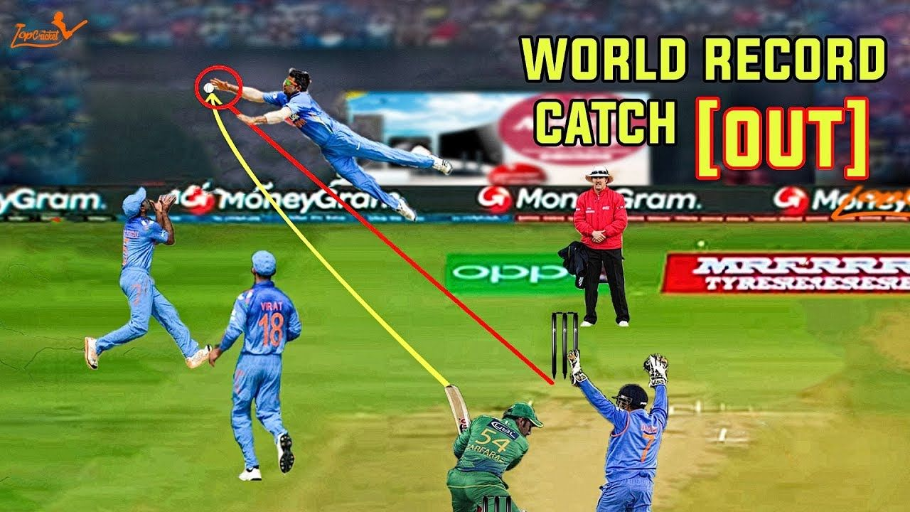 Top 10 [ Best Caught and Bowled ]in cricket Best catch