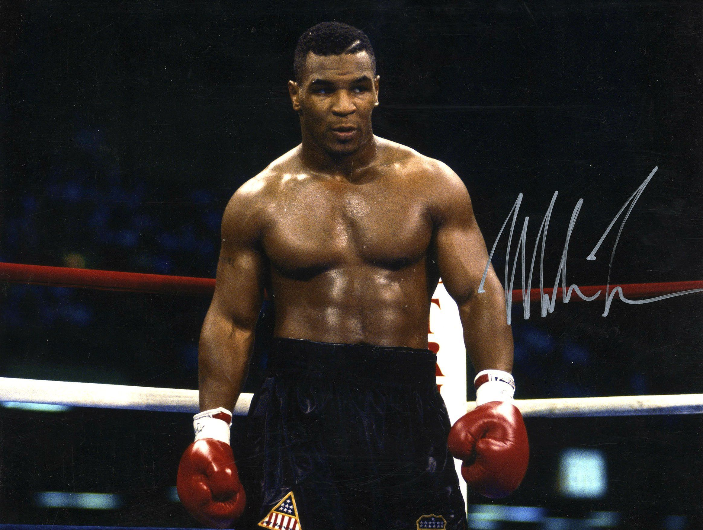 Boxing Mike Tyson Knockout Wallpapers Desktop Background Boxeo Mike Tyson Entrenamiento De Abdominales
