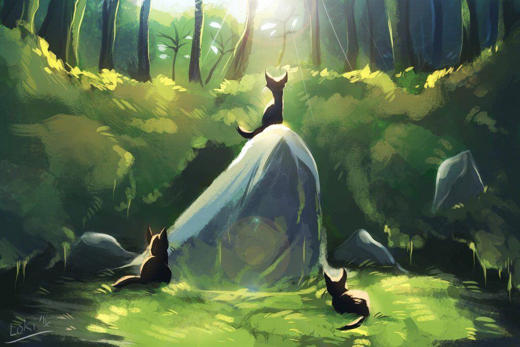 Cinderpelt By Meow286 On Tumblr Arty Warrior Cats Art