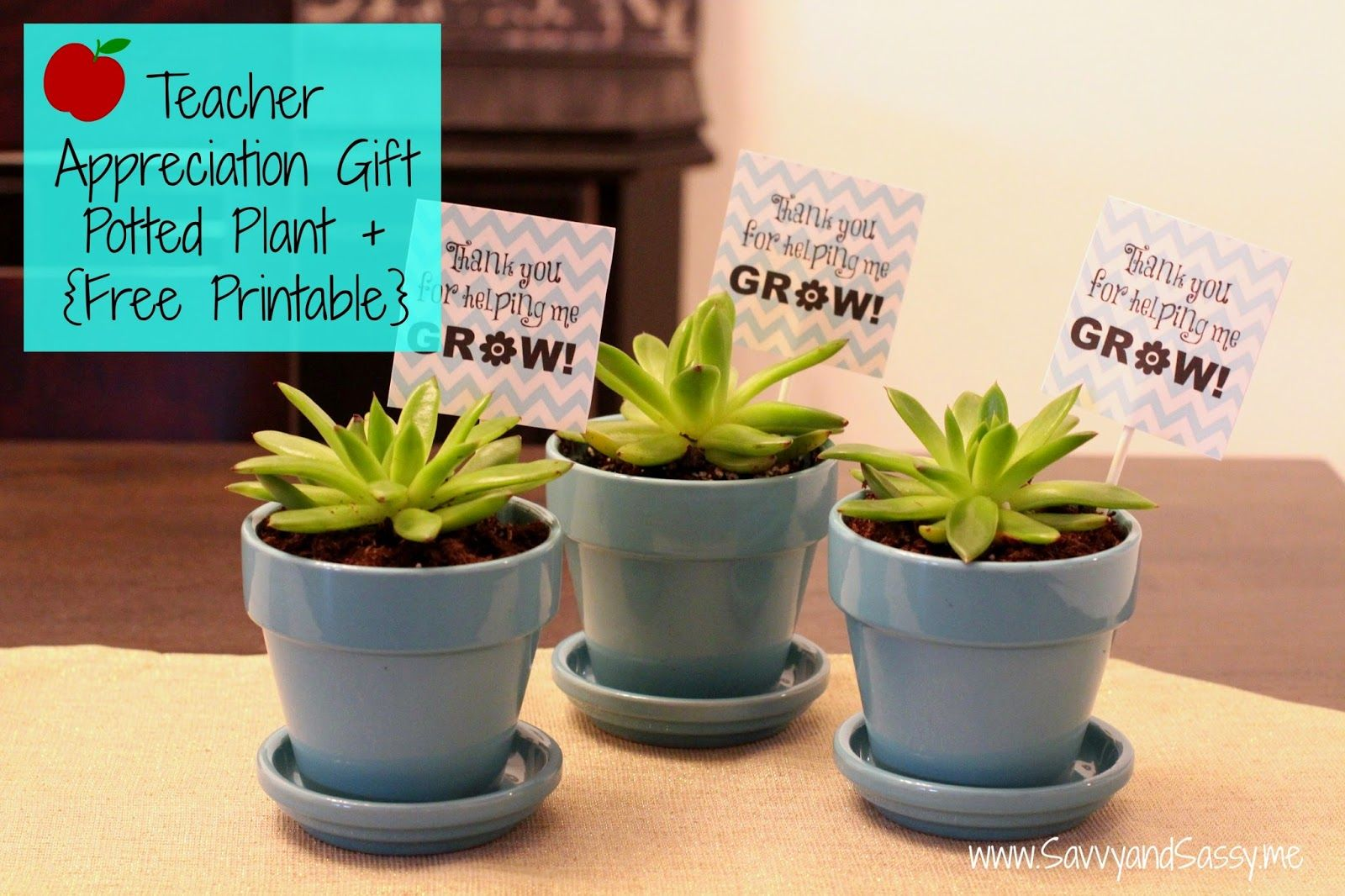 Thank You For Helping Me Grow Teacher Appreciation Gift