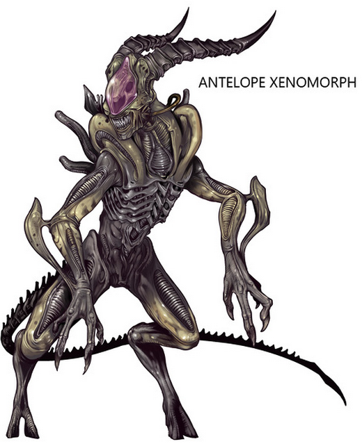 Cool Pictures Of Xenomorph