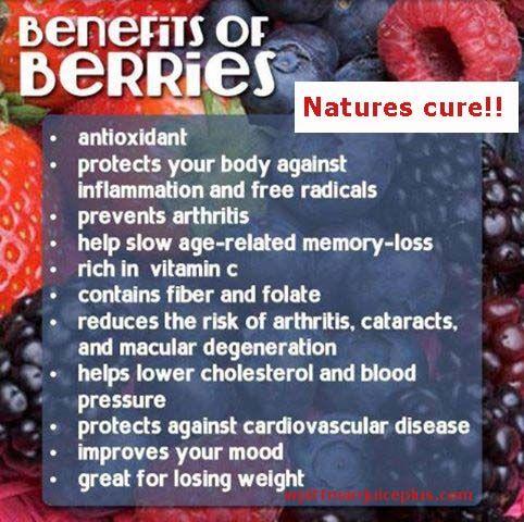 Juice Plus+ Vineyard Blend: 9 bær på kapsler som gør underværker for din krop og velvære.   Jeg bruger dem sammen Complete Shaken (og tager også selv frugt+grønsags kapslerne)