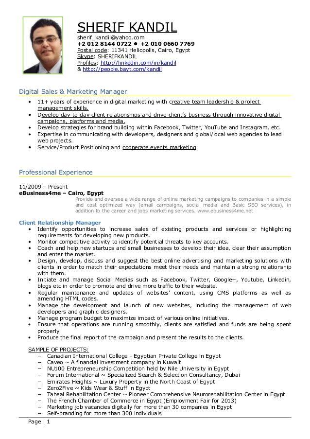 digital marketing resume example essaymafia samples visualcv - brand strategist resume