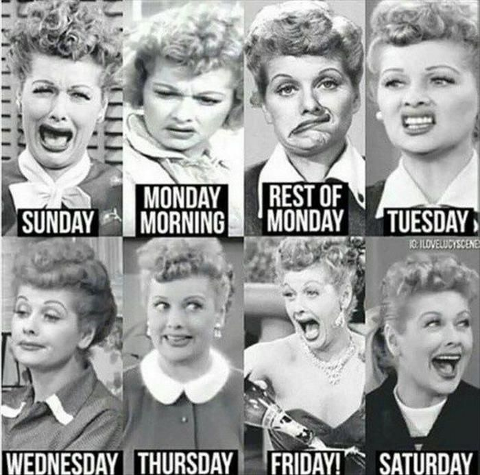 Funny Pictures Of The Day 53 Pics I Love Lucy Teacher Humor Love Lucy