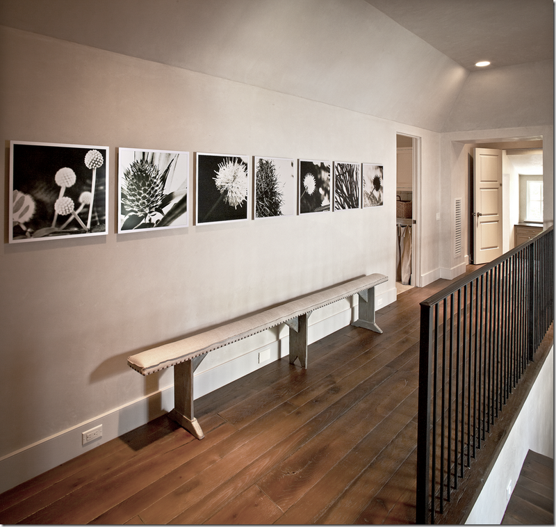 Just love this photography collection. Great wall decor idea.