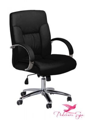 PSU PSOA - Customer Chair GC-004 (Black) $149.45  sc 1 st  Pinterest & PSU PSOA - Customer Chair GC-004 (Black) $149.45   Salon Customer ...