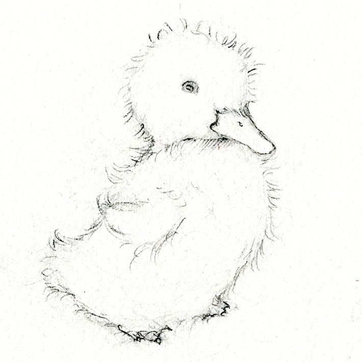 Adorable Art: Learn How to Draw and Paint a Duckling
