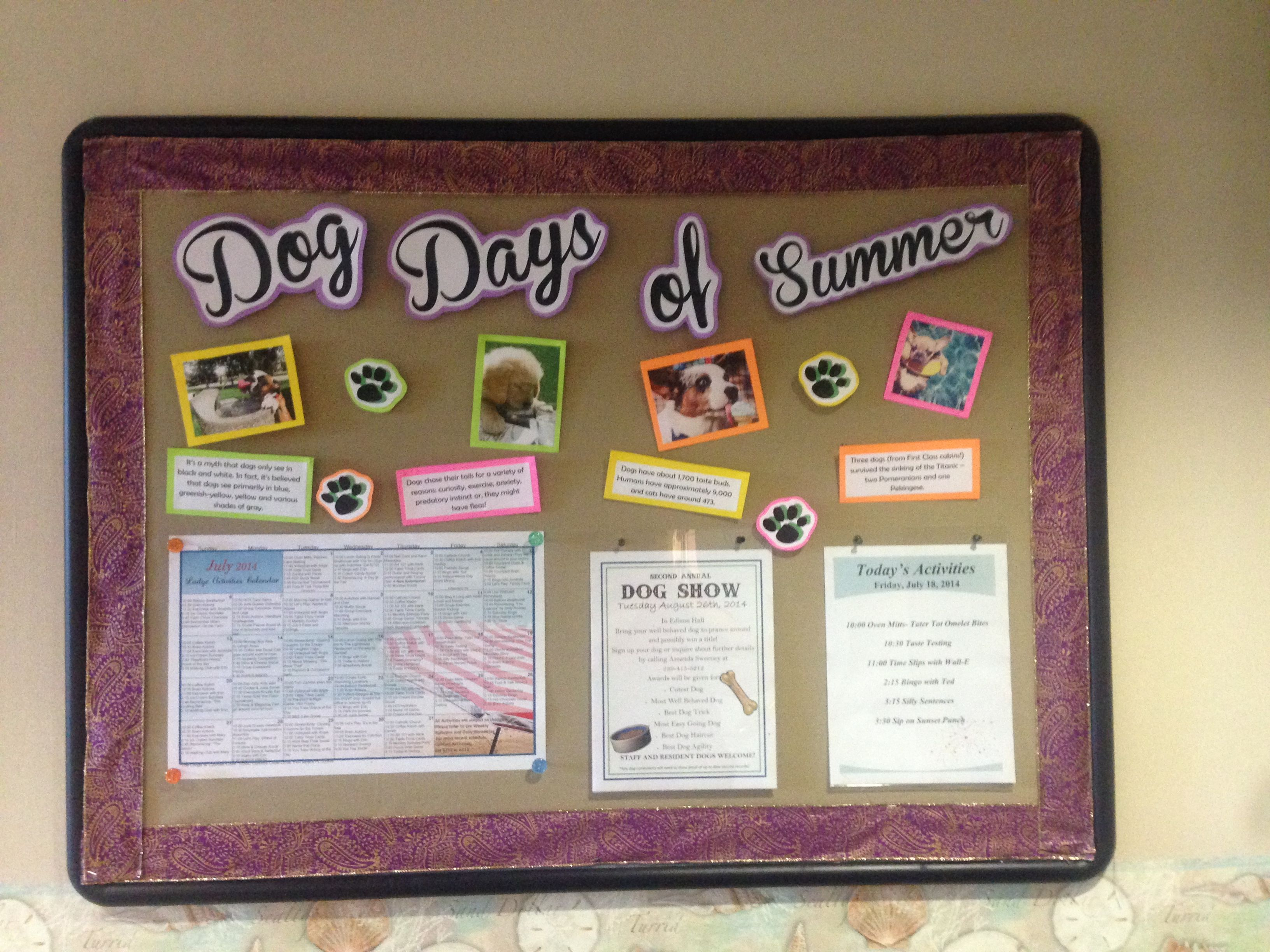 Bulletin board ideas for the month of july - Nursing Home Bulletin Board Idea Alf Snf Memory Care Adult Bulletin Board