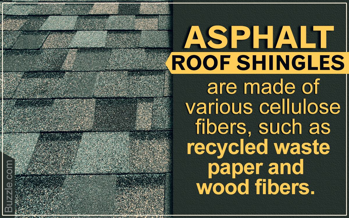 How To Clean Roof Shingles Roof Shingles Roof Roof Replacement Cost