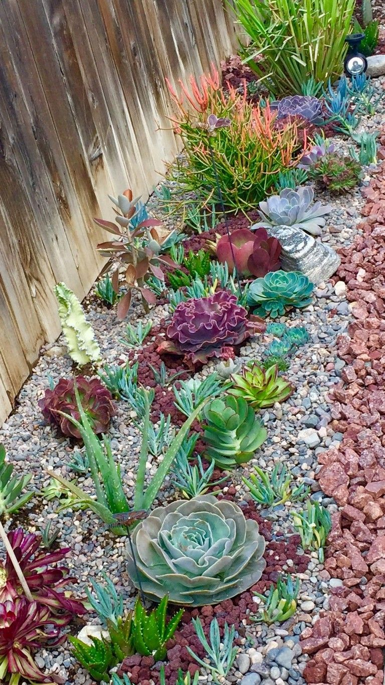 29+ Front yard succulent garden ideas information