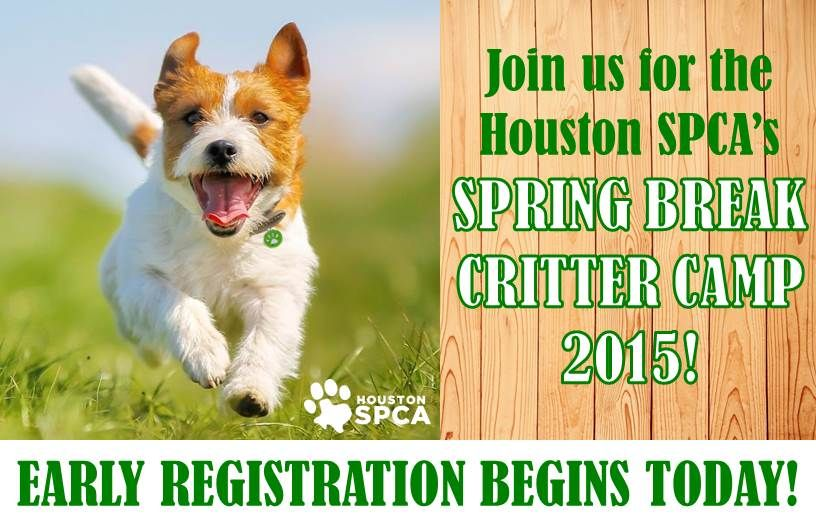 It may be chilly outside, but we are already planning for Spring Break. Our 2015 Spring Break Critter Camp runs from March 9 - 13 and 16 - 20.  Register now and save!  http://bit.ly/1lOCLGP