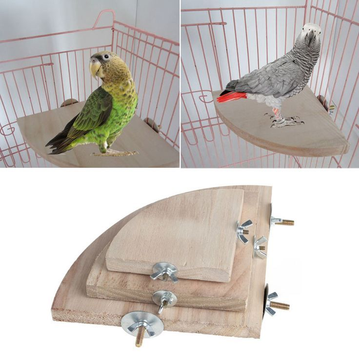 1Pc New Pet Bird Parrot Wood Platform Stand Rack Toy Hamster Branch Perches For Bird Cage Toy 1Pc New Pet Bird Parrot Wood Platform Stand Rack Toy Hamster Branch Perches...