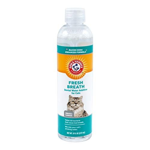 Arm & Hammer Dog Dental Care Dental Water Additive For Cats | Cat Dental Rinse in Mint Flavor, 8 Ounces – Cat And Dog Deals #dentalcare