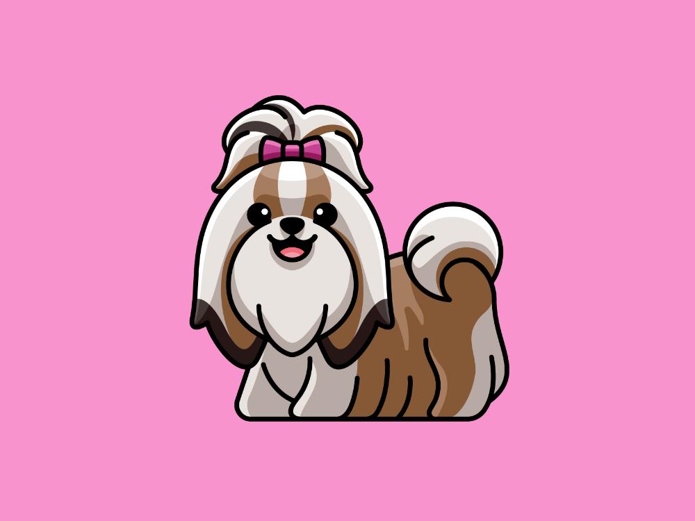 Long Haired Shih Tzu Shih Tzu Dog Branding Shih Tzu Puppy Training