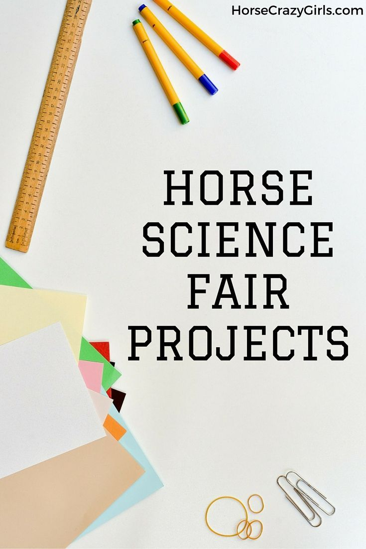 Horse Science Fair Projects | Science fair, Fair projects and Horse