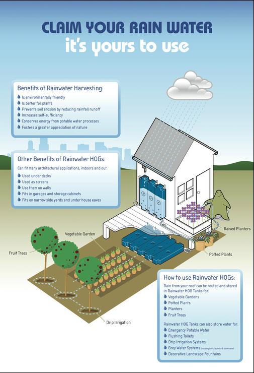 Rainwater Hog Rainwater Harvesting Rain Water Collection Water