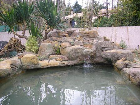 Aménagement de bassin de jardin http://www.habitatpresto.com ...