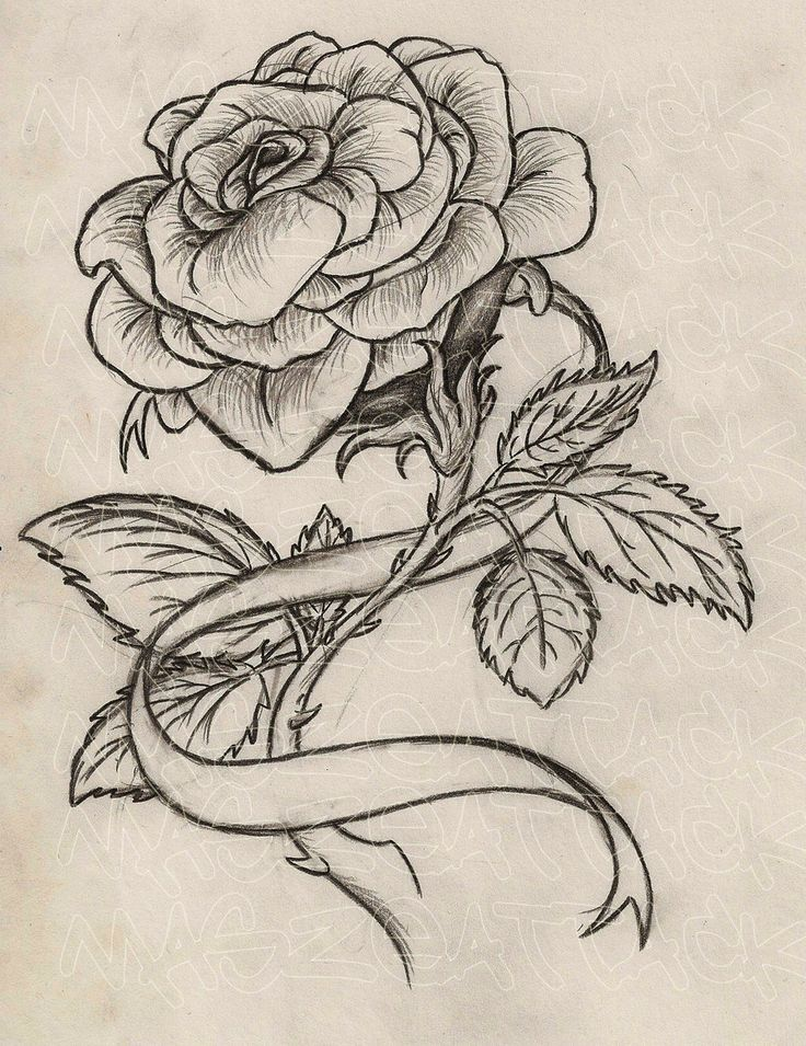Rose With Thorns Tattoo Designs Tatuajes Tattoos Ribbon Tattoos