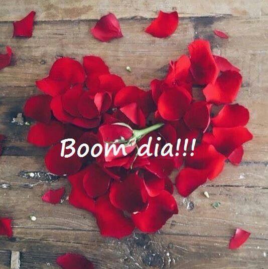 Flores pra perfumar o dia