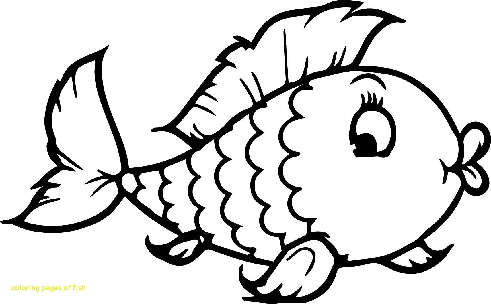 Saltwater Fish Coloring Pages For 2019 Http Www Wallpaperartdesignhd Us Saltwater Fish Coloring Fish Coloring Page Cartoon Coloring Pages Owl Coloring Pages