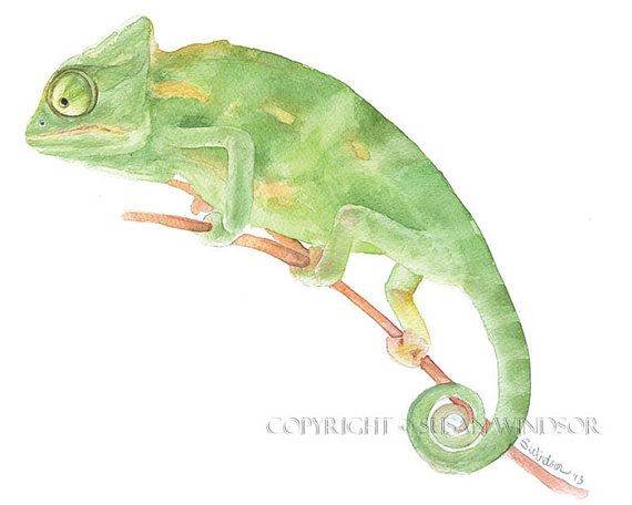 Chameleon Watercolor Painting Giclee Print Fine Art Watercolor 10 x ...
