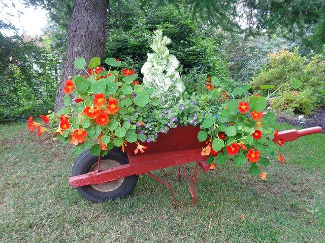 34 of the Best Wheelbarrow Planter Ideas